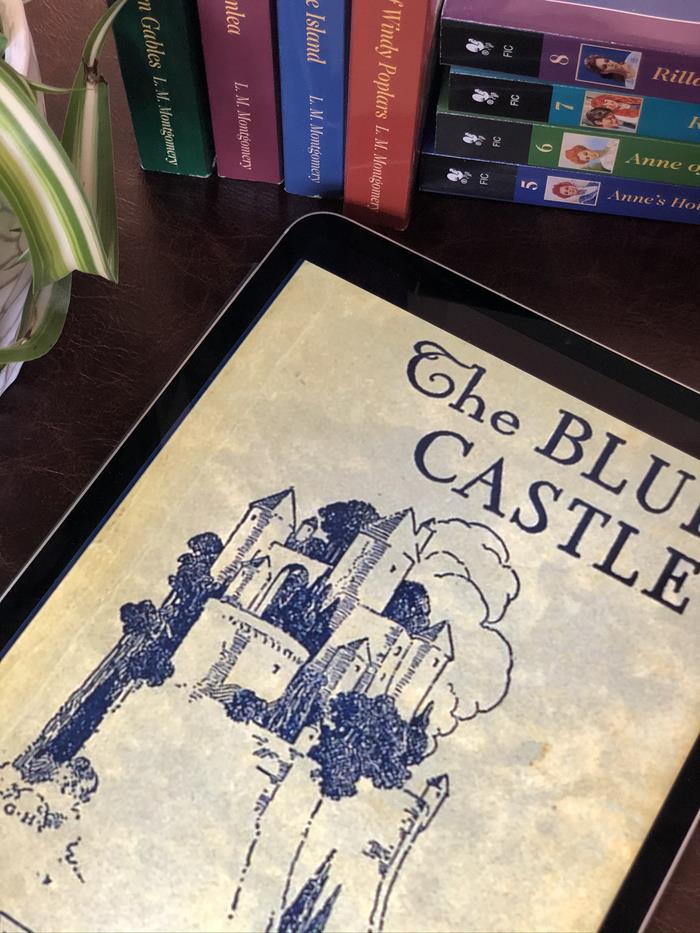 The Blue Castle Book Review