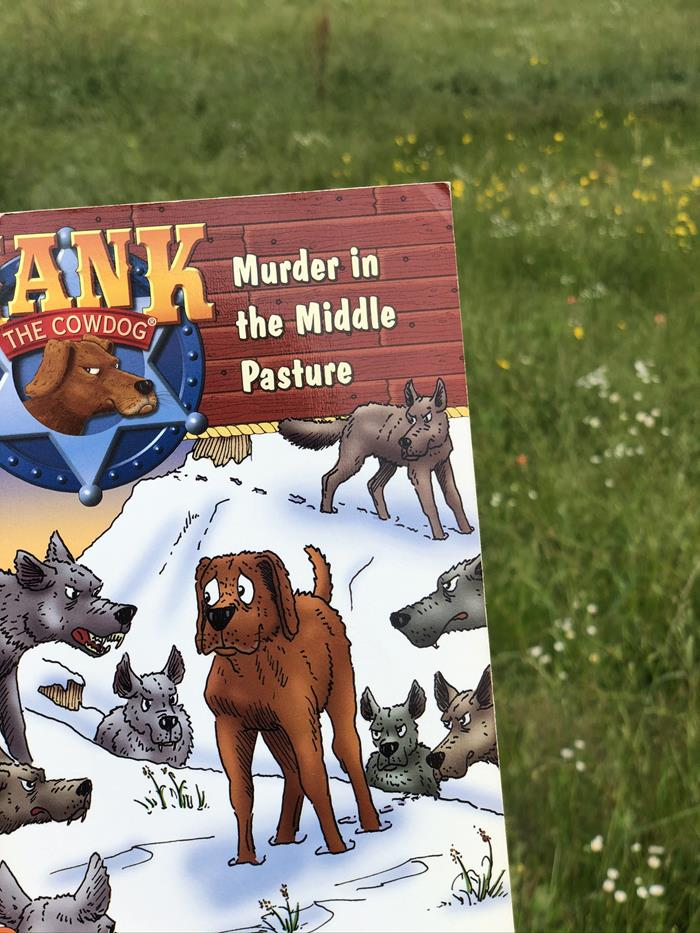 Hank the Cowdog Book
