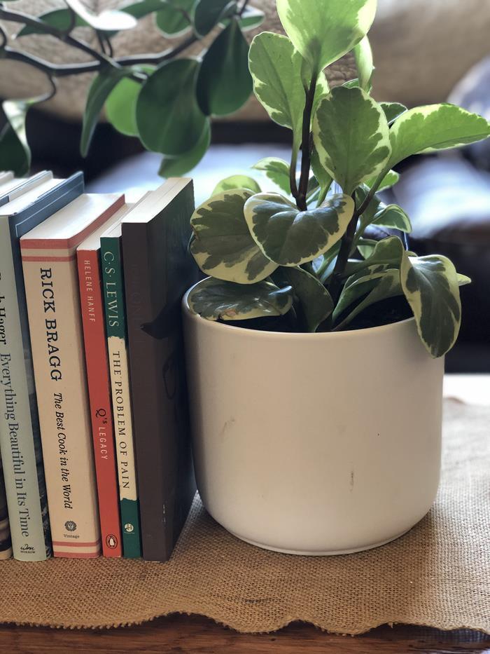 Nonfiction November Reading List