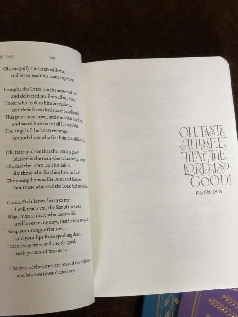 ESV Illuminated Bible journal page