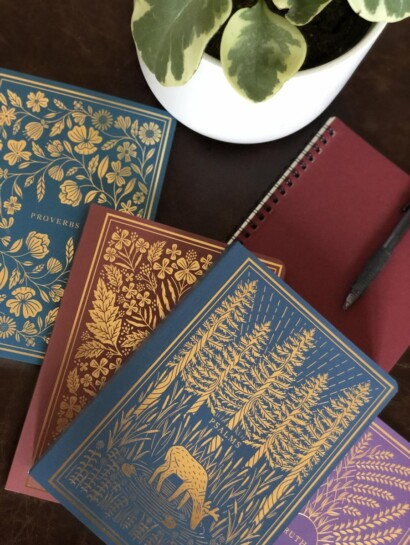 ESV Illuminated Bibles on a table with plant in white pot