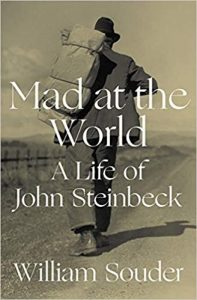 Mad at the World book cover